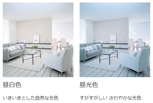 昼白色・昼光色の照明のお部屋イメージ